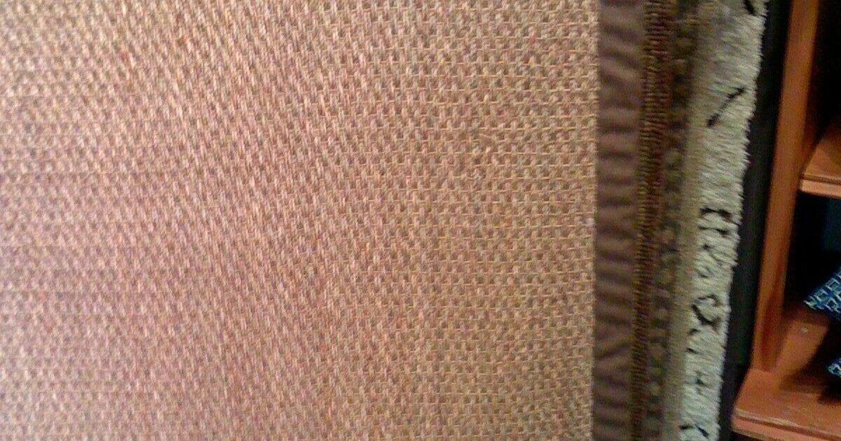 Pottery Barn Color Bound Seagrass Rug Espresso Edge 5x8